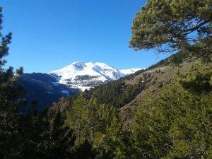 15-esquiarandorra